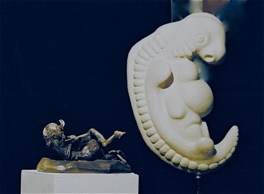 Pan Schmauchbrand 40cm Embryo Rohbrand 95cm
